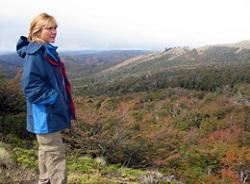 Refugio Neumayer e bosque de Lengas