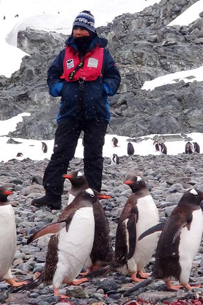 Antartida - Em qualquer clima