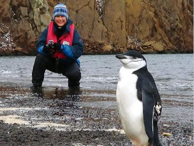 Antartida - Sandra observa pinguim de barbicha