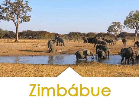 ZIMBABUE 2