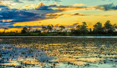 colorful_sunset_in_pantanal_brazil_small
